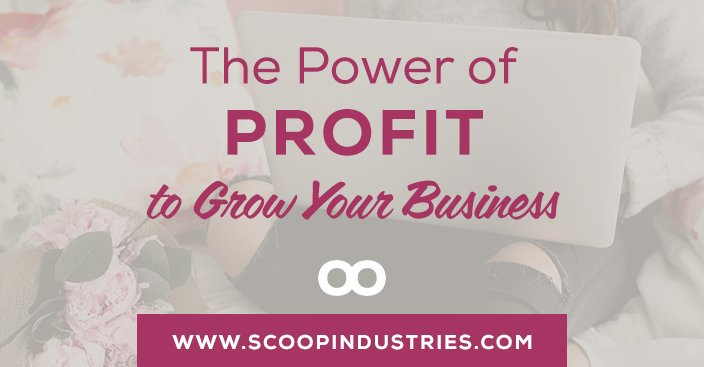 Episode 60: The Power of Profit to Grow Your Business